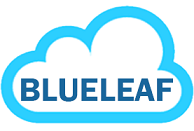 Blueleaf Cyberspace Systems Pvt Ltd on Elioplus